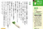 201210音読(大根)